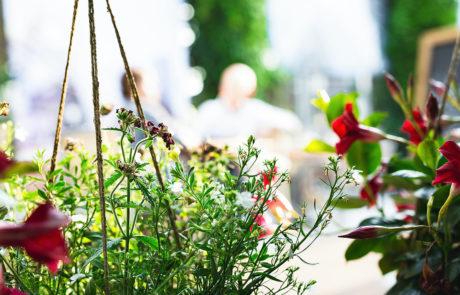 berlage-tuin-groen